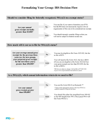 PTO Today: IRS Decision Flow Chart