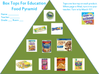 Food Pyramid collection sheet