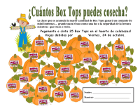 pumpkin patch collection sheet - 25 ct - SPANISH